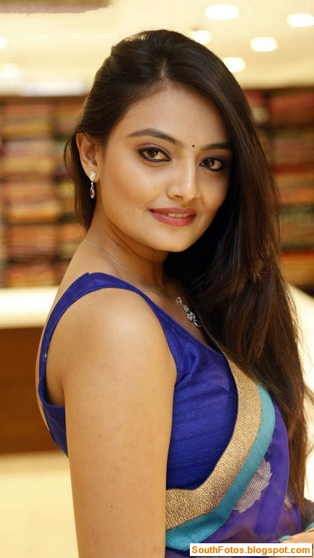 Nikitha Narayan in Saree Wallpaper