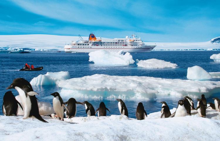 No aliens in antarctica please iaato for Can anyone visit antarctica