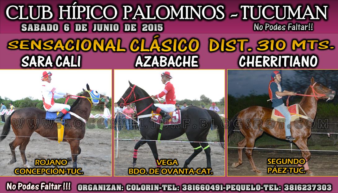 06-06-15-HIP. PALOMINOS-CLAS.
