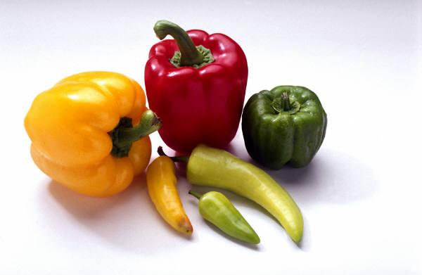 a pepper green yellow red