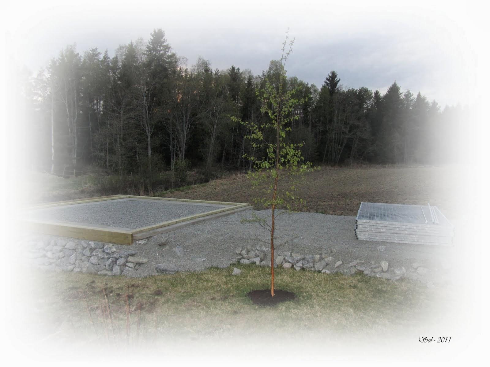 2011 Hundegård/bod