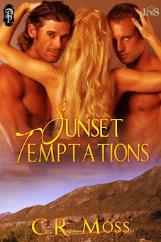 Coming Soon! Sunset Temptations