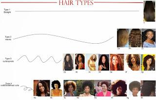 Aprenda  Como cuidar de seu cabelo de acordo com o tipo dele