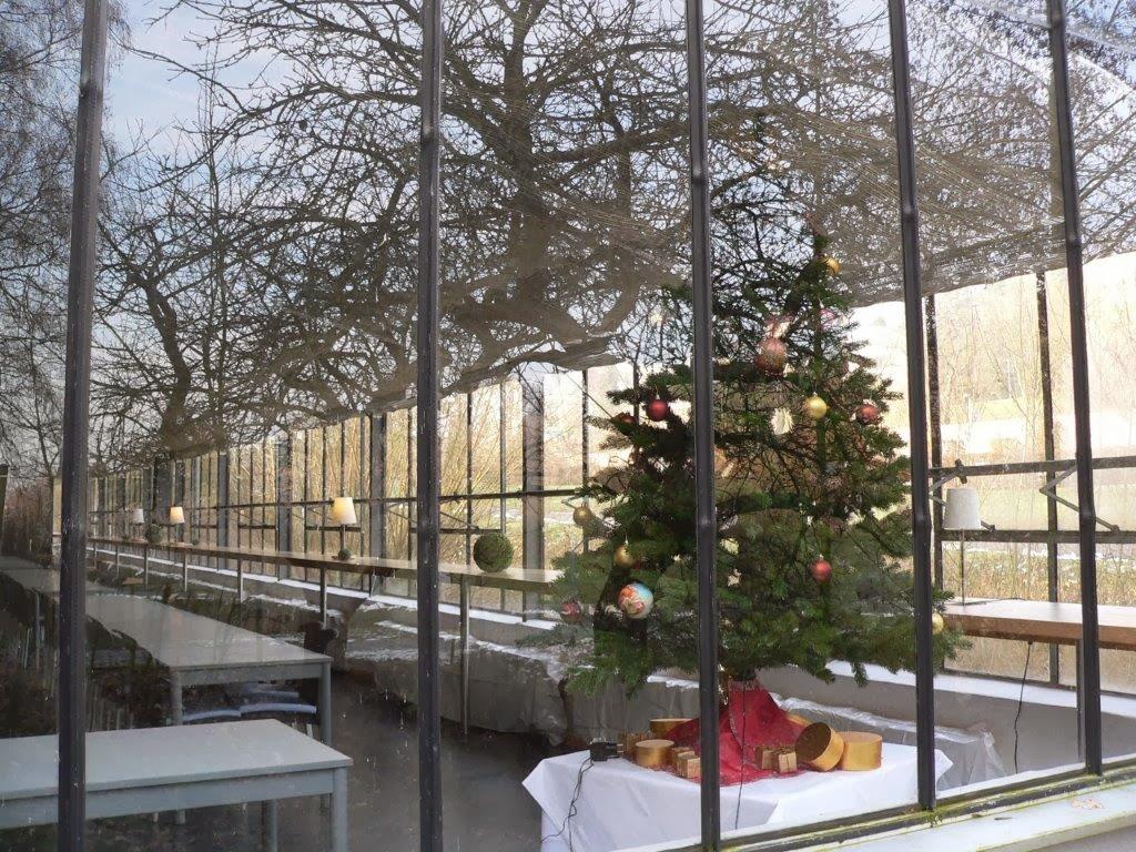 Rehaklinik Glashaus Weihnachtsbaum