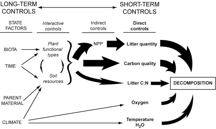 wild plants post  global change and limitation