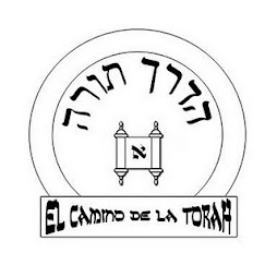 caminotorah.com