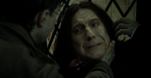 Há exatamente 1 ano, 'Harry Potter e as Relíquias da Morte - Parte 2' estreava no Brasil   Ordem da Fênix Brasileira