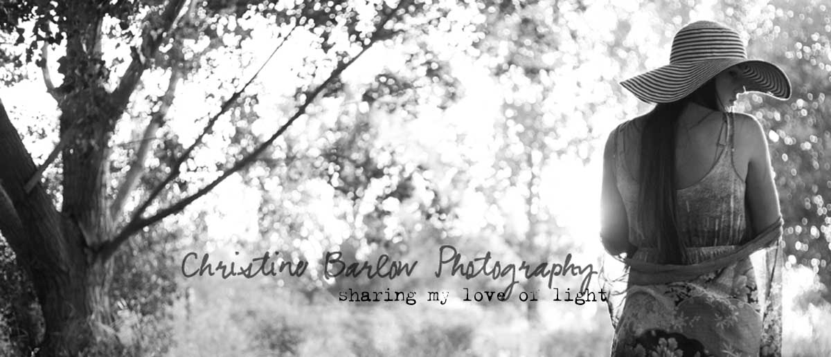 Christine Barlow Photography