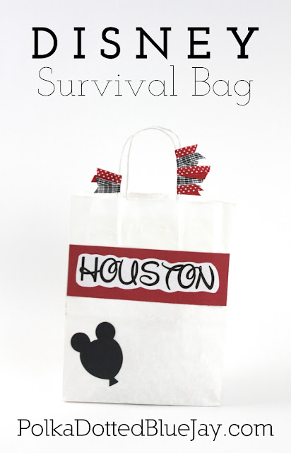Disney Survival Bag full of Disneyland Essentials #Disney #Disneyland #familyvacation