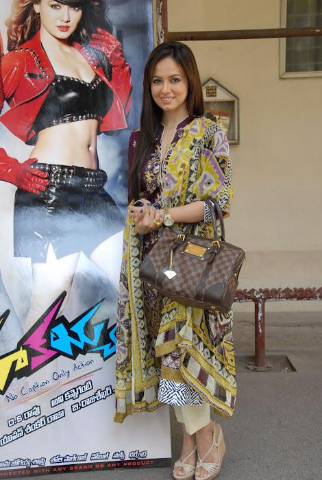 sana khan @ mr. nookayya triple platinum disc actress pics