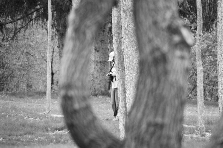 natural framing photography. Natural Framing Photography