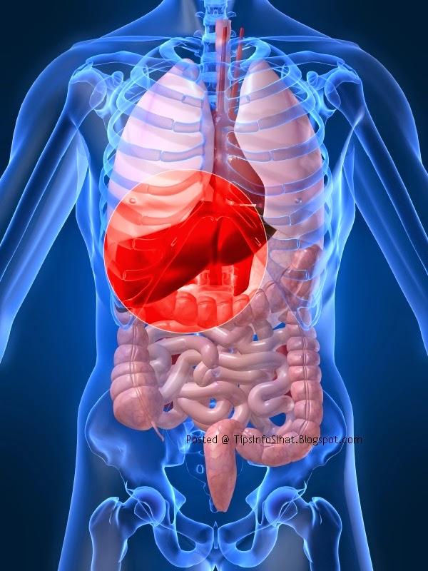 Hepatitis C Penyakit Hati