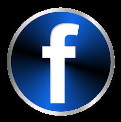 Facebook FEBRAPE