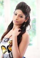 Actress Vijayalakshmi still