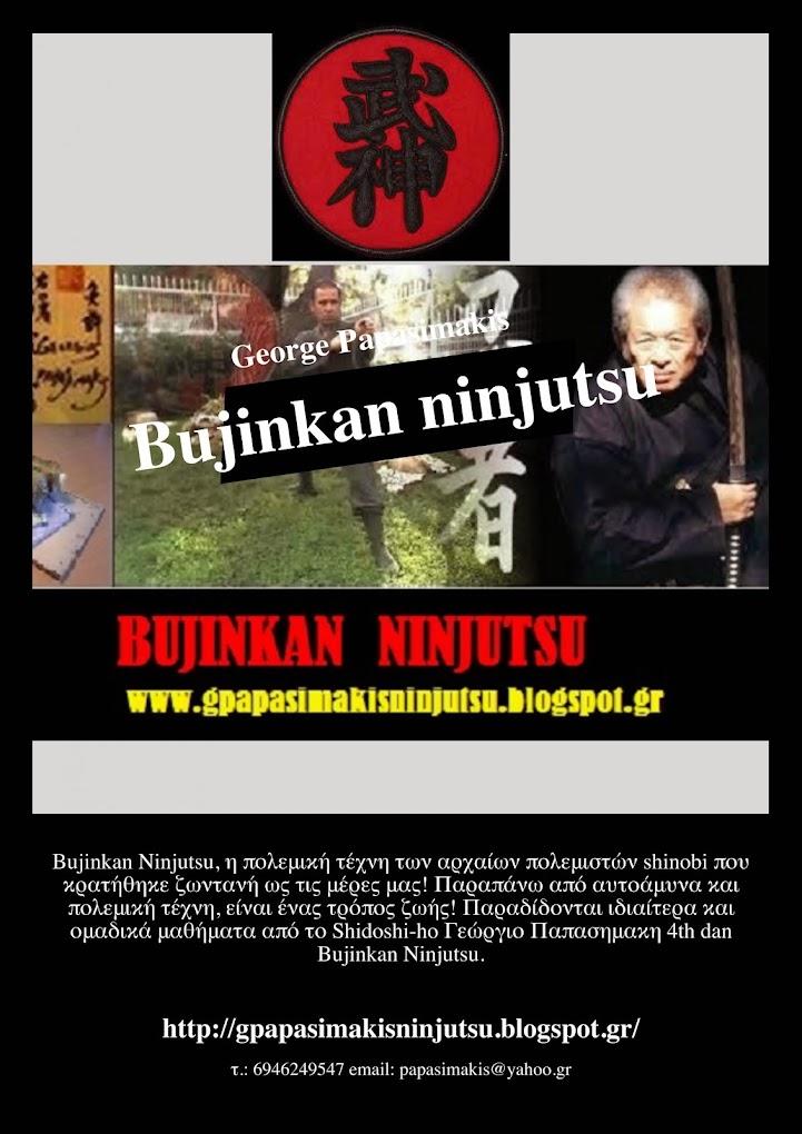 Ιδιαιτερα και ομαδικα μαθηματα ninjutsu