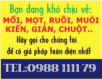 phuong-phap-diet-muoi-ruoi-kien-gian