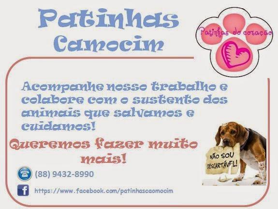 PATINHAS CAMOCIM