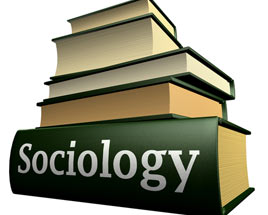 Term paper sociology