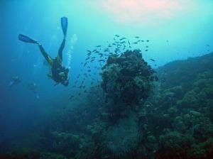 Wielka Rafa Koralowa w Australii.