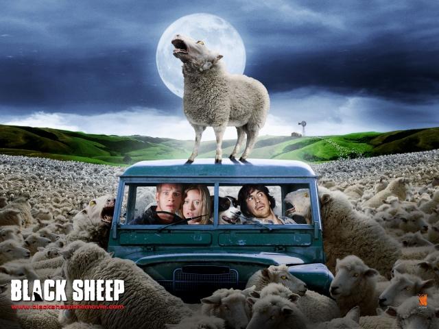 Cừu Ăn Thịt Người, Black Sheep