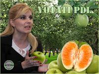 Funny photo Elena Udrea Brandul Culoarea PDL
