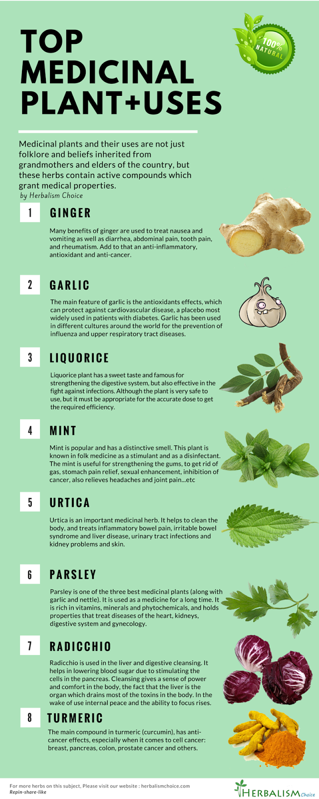 Information on herbs and their uses
