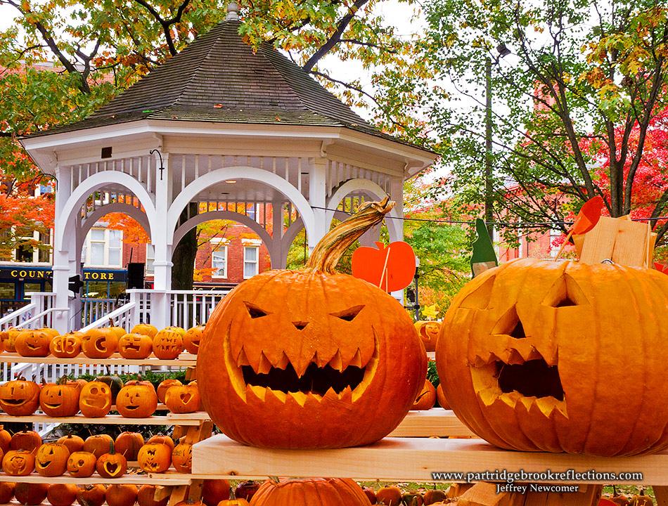 Halloween in LA - Page 4 111022PumpkinsGinKeeneNH