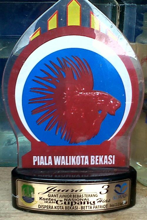 Piala Walikota Bekasi - Giant Junior Bebas Terang