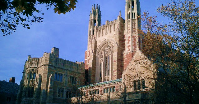 Yale law 250 word essay diversity statement