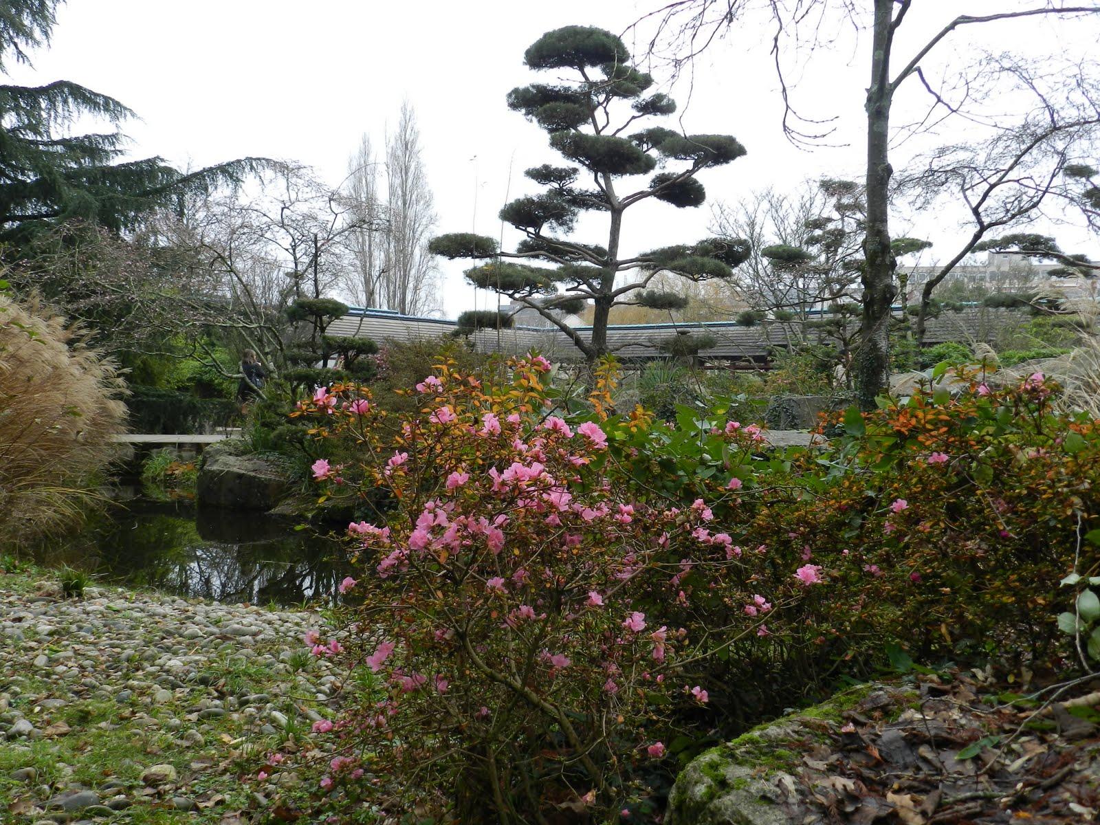 La pierre et la plume jardin japonais de la ville de for Jardin japonais nantes