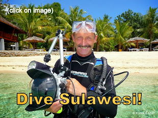 Dive Sulawesi - Click on Image for Details: