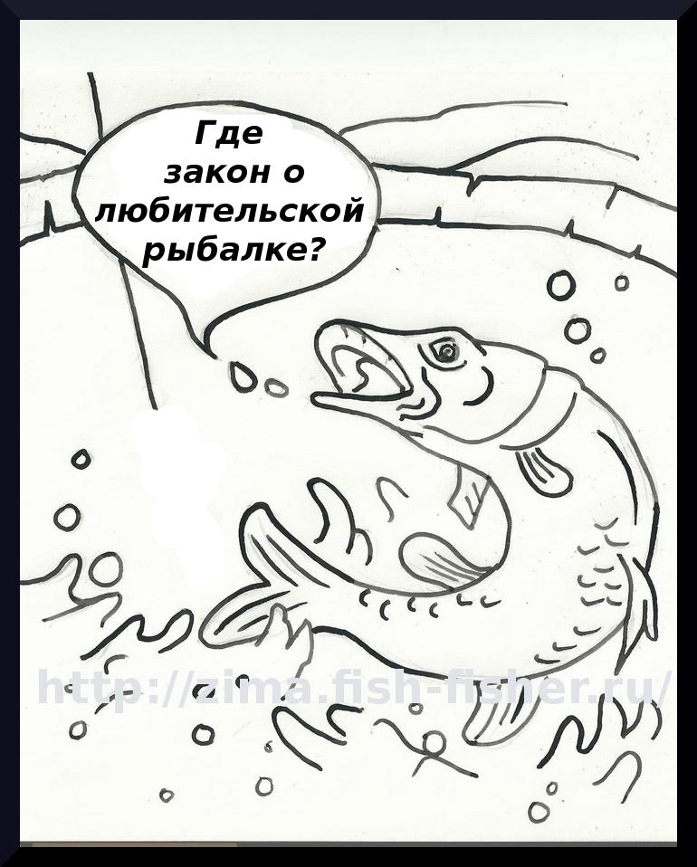 Когда будет принят закон о любителькой рыбалке?