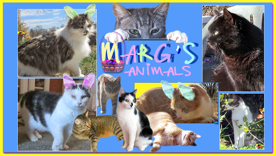 Margs Animals