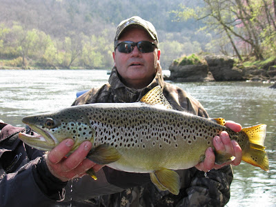 Guided Fishing-Brown Trout
