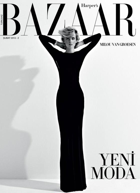 harper's bazaar turkey february 2013 cover