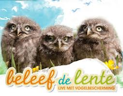 Beleef de lente