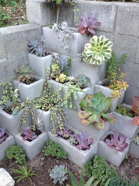 Cinder Blocks Succulent Garden