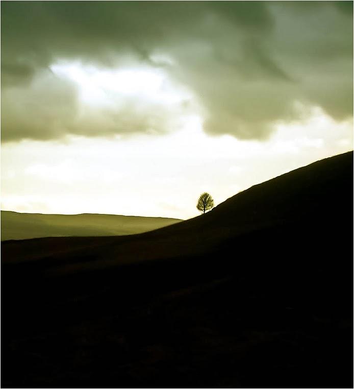 emphoka, photo of the day, Walks in Dreams, FinePix S5000