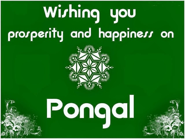 Happy Pongal 2016 HD Greetings Wallpapers in Tamil