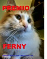 premio ferny