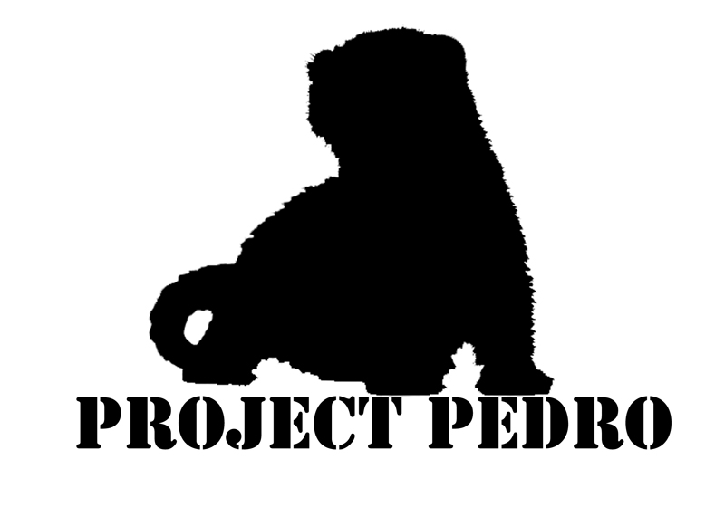 Project Pedro 2011