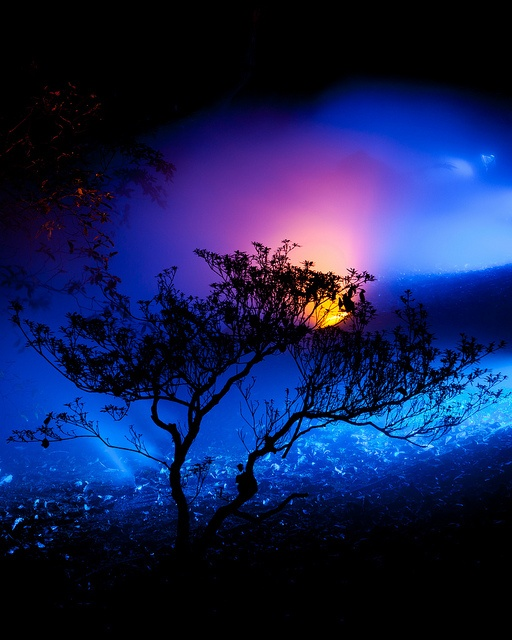 Rikugien Blue Fog