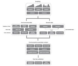 Fig. 1: Rellstab et al. (2015)