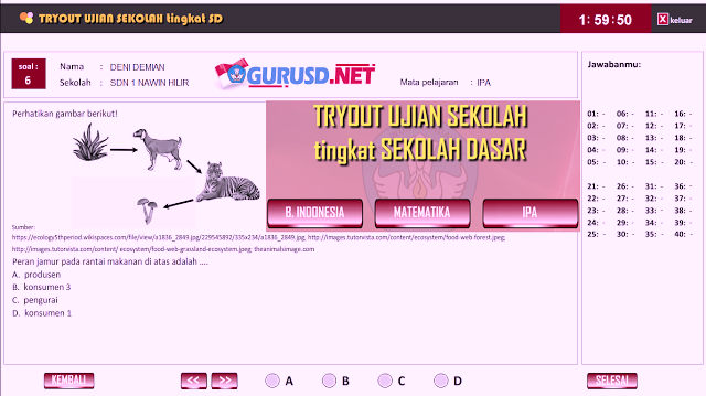 Portal Info Guru Software