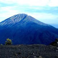 Gunung Merbabu  Survival