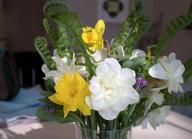 Garden Appreciation Society, daffodils, ferns, Virginia bluebells