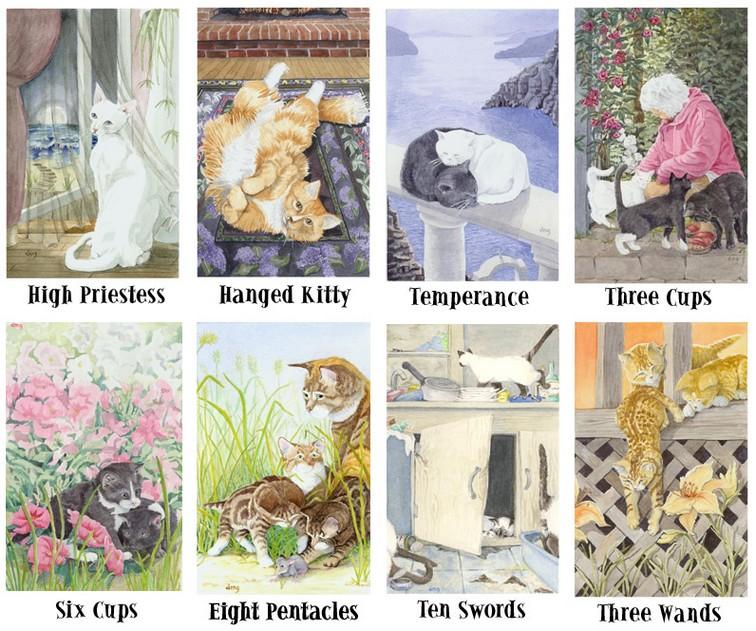 Cat's Eye Tarot Cat Cats ตาแมว ไพ่ทาโร่แมว US Games สัตว์แพทย์ รักษาแมว ไพ่ทาโรต์ ไพ่ทาร็อต แมว ทาร็อท