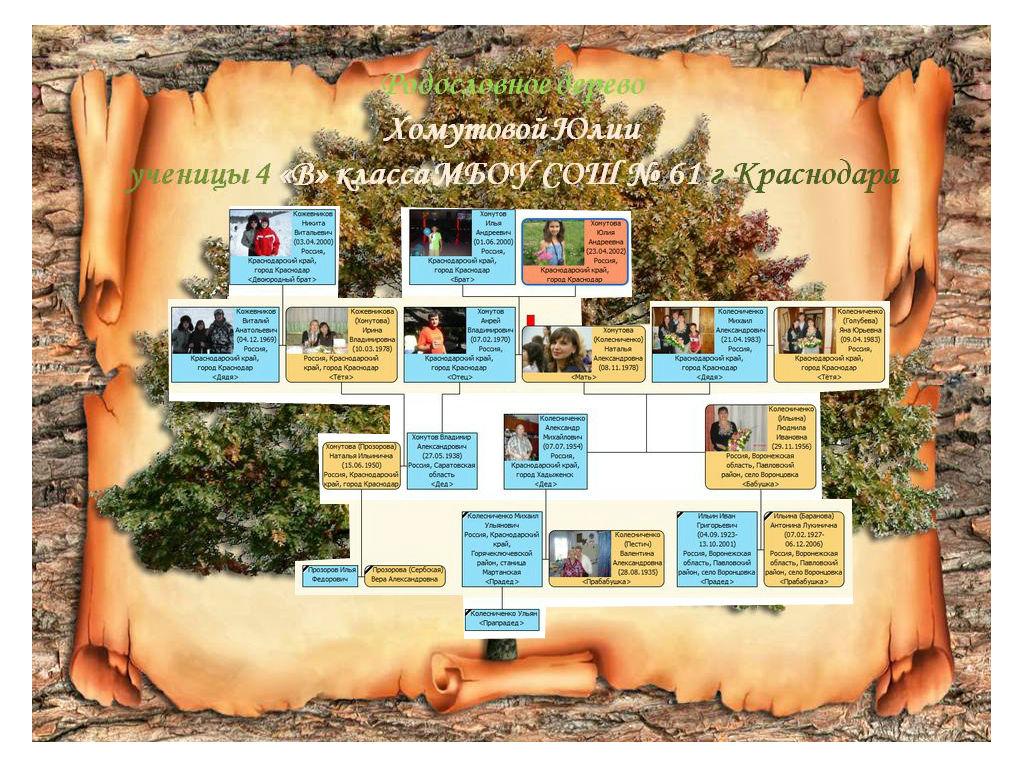 Шаблоны оформления родового дерева