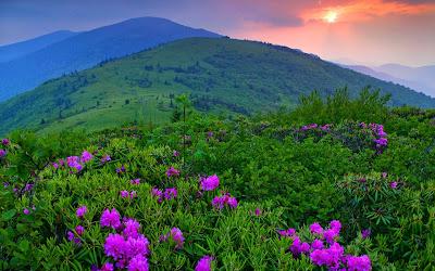 Buenos días desde las montañas - Good Morning