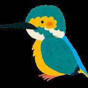 カワセミのイラスト(鳥)